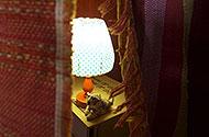 lampje en leeuw in geheime kamer