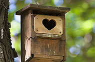 hartvorm als opening vogelhuisje